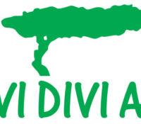 Divi Divi Air voert vluchten op Aruba op