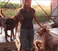 Rosanna Kluivert zoekt nieuwe locatie voor hondenopvang