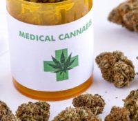 Conferentie op Aruba over legalisering medicinale cannabis