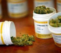 Druk bezochte lezing Camelia-Römer over medicinale cannabis in UNA
